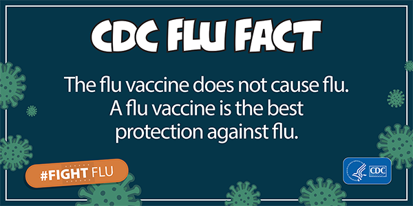 The flu vaccine does not cause the flu. A flu vaccine is the best protection against flu.