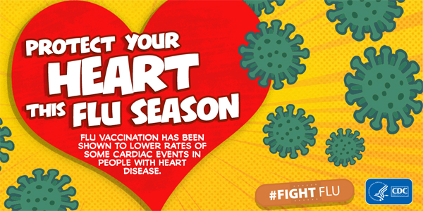 Flu vaccination has been shown to lower rates of some cardiac events in people with heart disease.